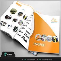 thiết kế profile kaido1